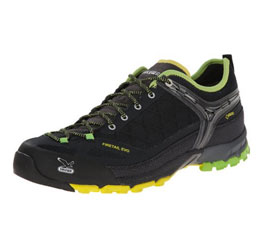 Salewa MS Firetail Evo GTX